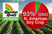 North American Soy Crop